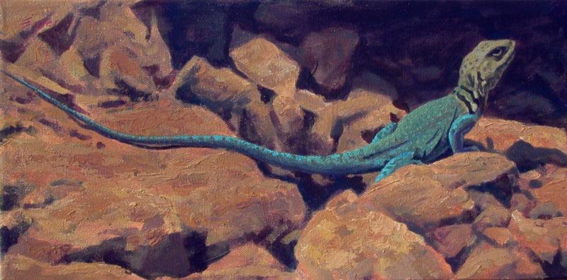 Collard Lizard