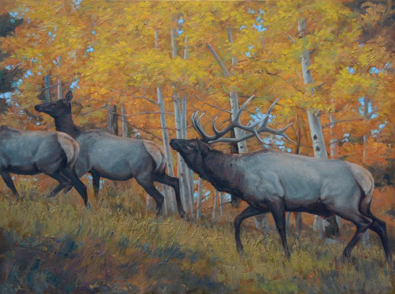 Fall In The Air - Elk