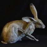 Jack Rabbit IV