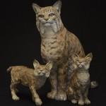 Bobcat Mama & Babies