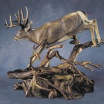 Apparition - Whitetail Deer