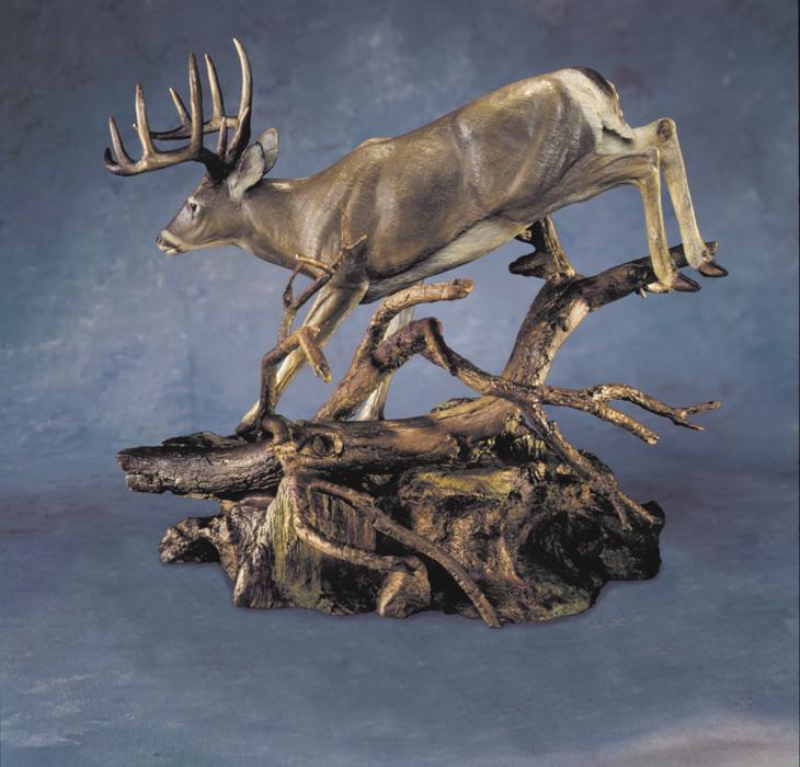 Apparition - Whitetail Deer