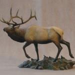 Autumn Wind - Elk
