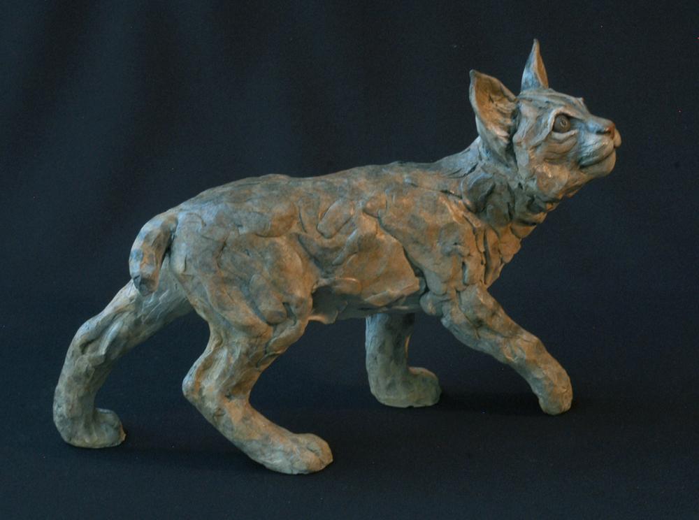 Bobcat Baby II