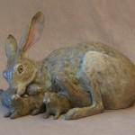 Jack Rabbit Family