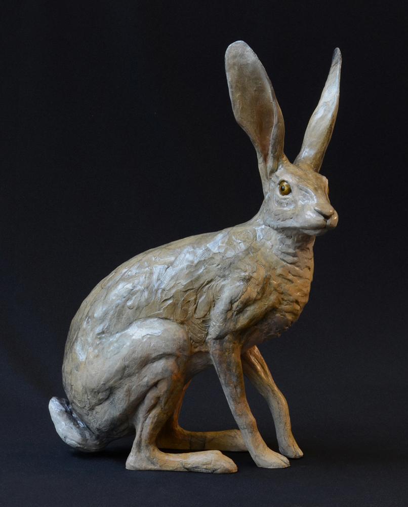 Jack Rabbit I