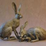 Jack Rabbit I & Family