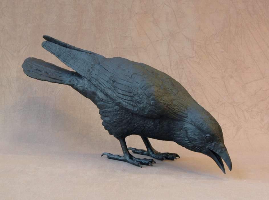 Raven I D