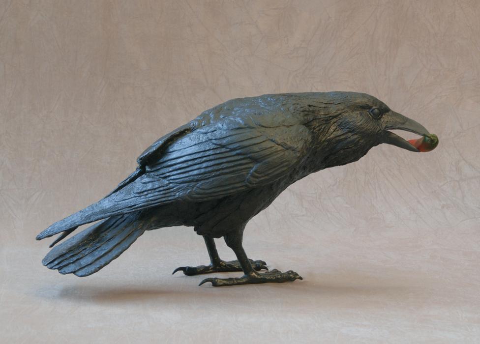 Raven IV C