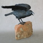 Raven IX B on Stone