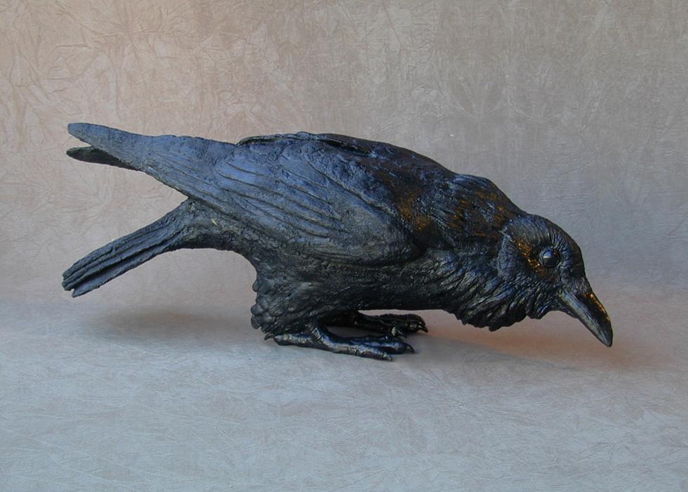 Raven X