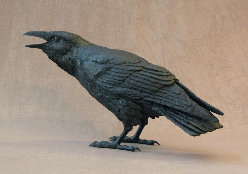 Raven XII C