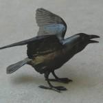 Small Raven V
