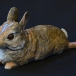 Cottontail Baby VII