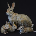 Cottontail II Family